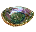 Abalone Shell Smudge Bowl/Incense Holder